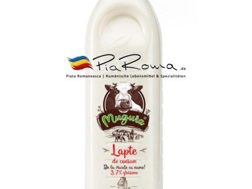 PiaRoma-de-Lapte-consum-37-1